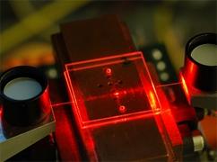 Integration von polymeren Lichtwellenleitern und Fluidkanälen